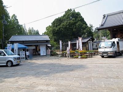 法然寺の境内にある「竜雲」