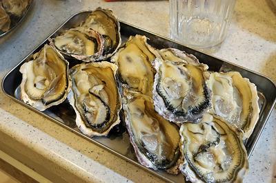 殻開けやって「生牡蠣」