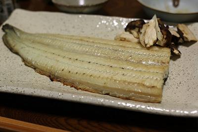 初めて食べた鶴橋の「川徳」の鰻の白焼き
