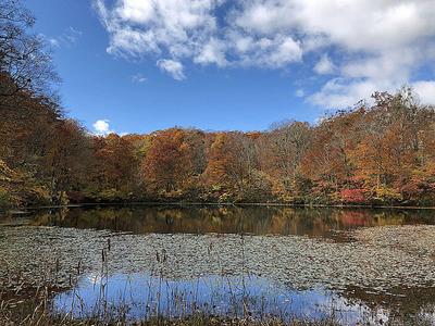 福井県大野市の紅葉スポット「刈込池」