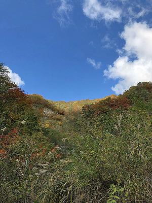福井県大野市の「刈込池」道中の紅葉