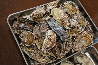 殻付き牡蠣4kg