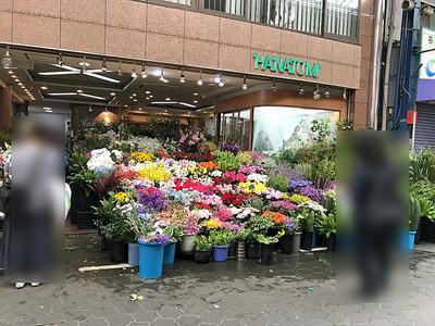商品が豊富な花屋さん