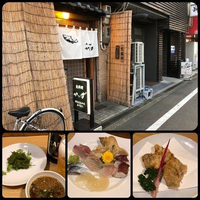 福井市の居酒屋「かっぱ」で飲み食い